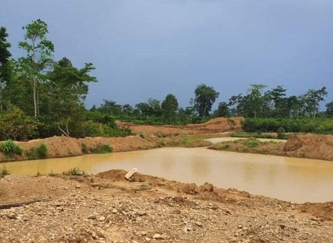 Green Ghana sounds Northern warning