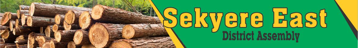 You are currently viewing Sekyere East District