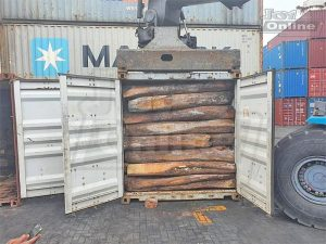 13 containers filled with banned species rosewood nabbed at Tema Port