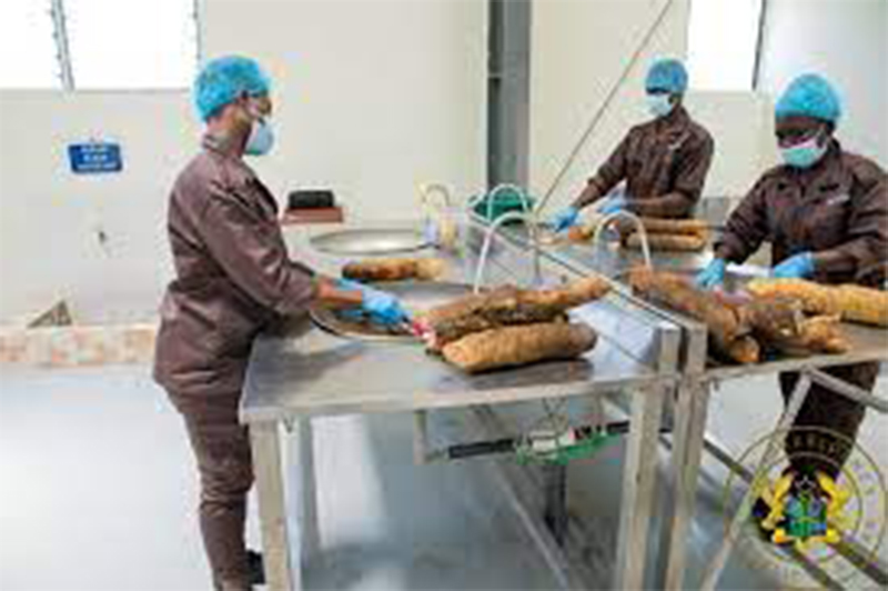President commissions GH¢10M yam and cassava processing factory in Krachi East