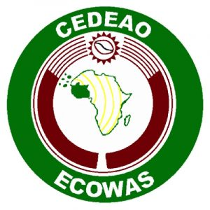 Read more about the article ECOWAS Mission urges stakeholders to support Mali's transition process