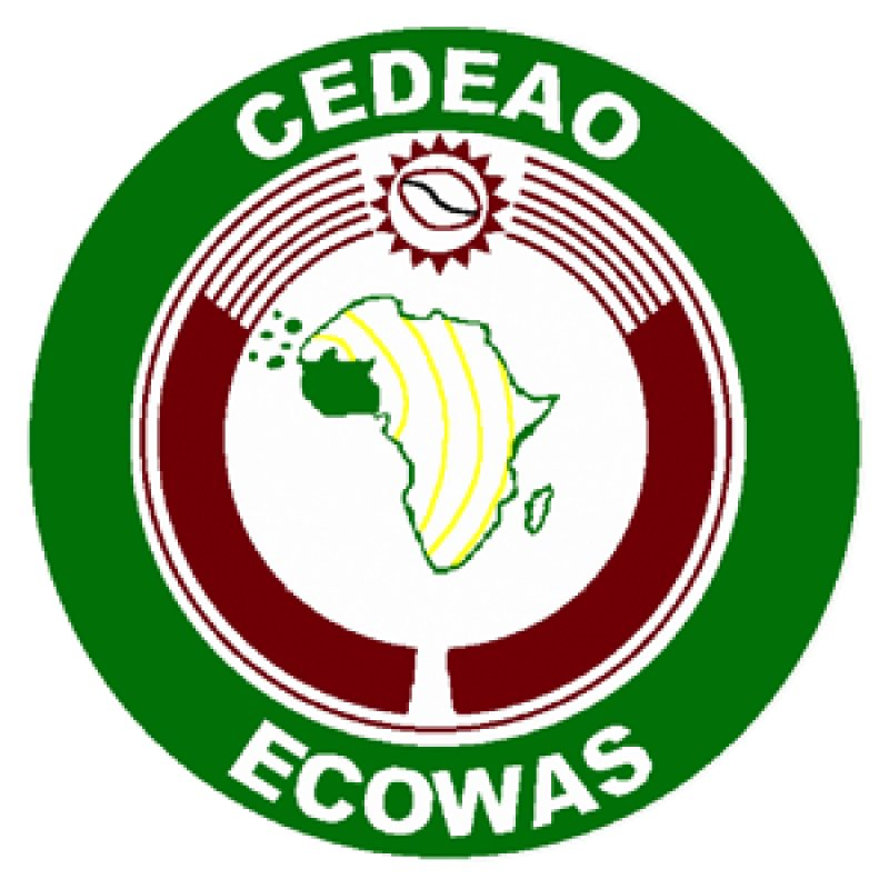 ECOWAS Mission urges stakeholders to support Mali's transition process